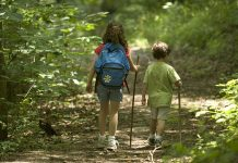 kids hiking in the woods