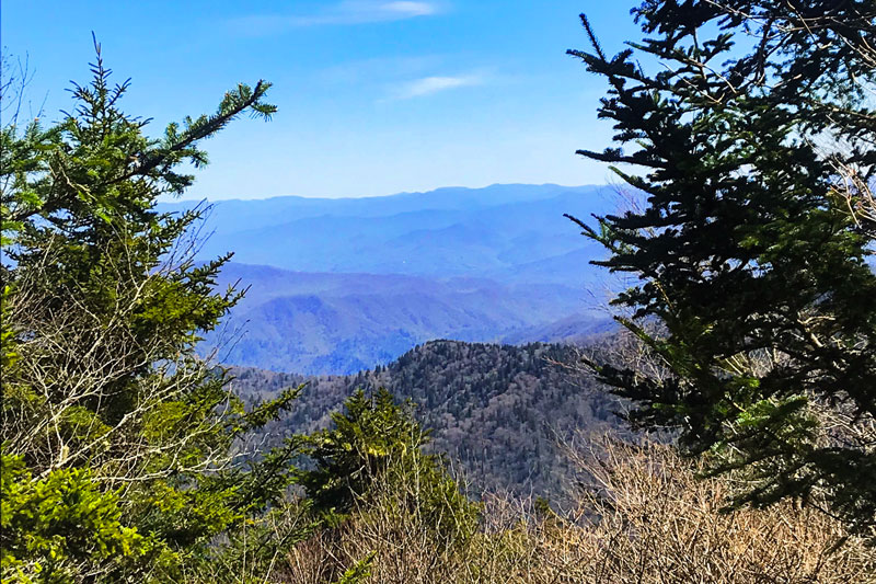 view near clingmans dome